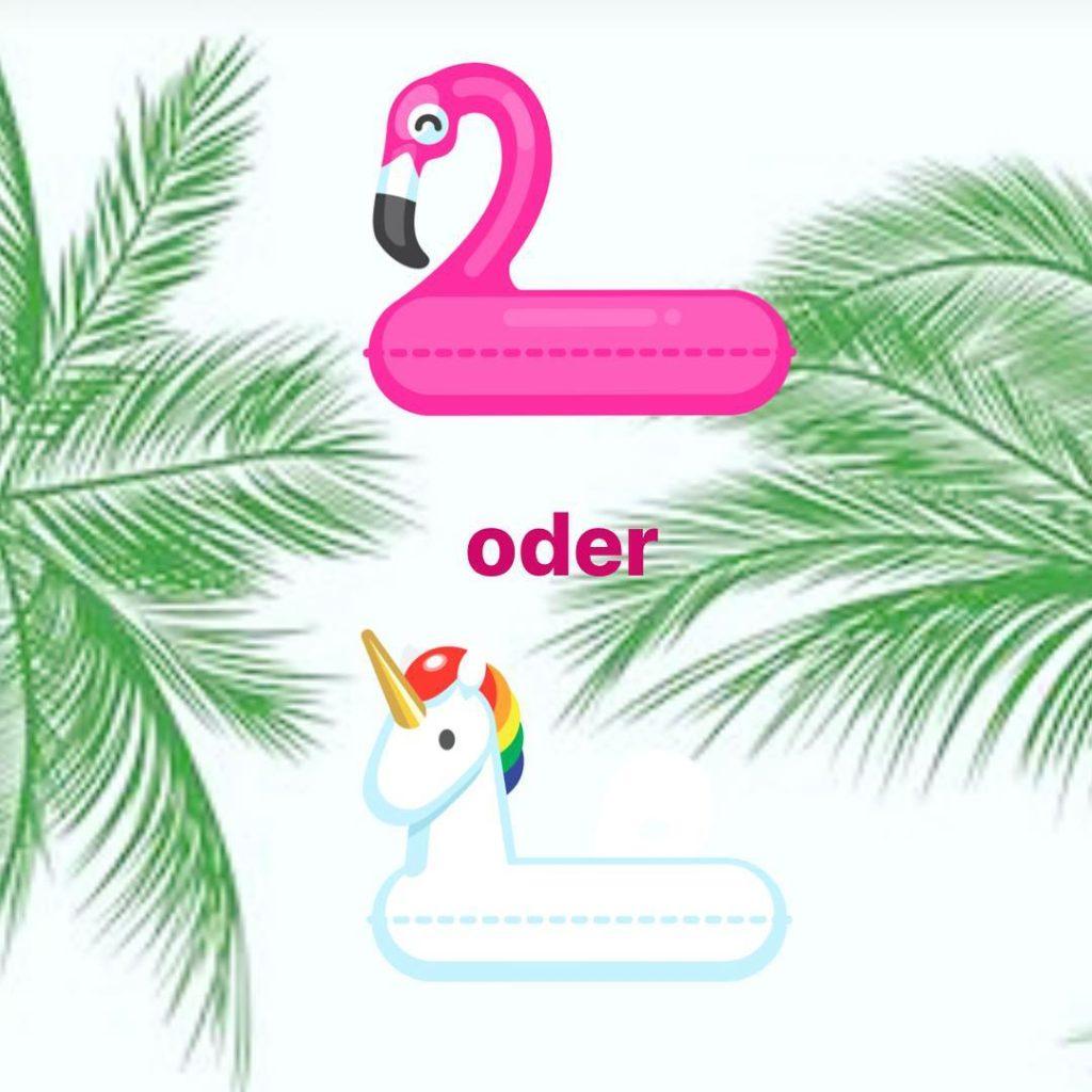 Flamingo oder Einhorn ? ihrentscheidet